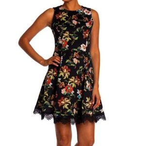 NWT Printed Scuba Dress